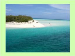 ニューカレドニア研修旅日記  カナール島&ウベア島