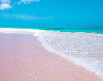 絶品!パウダーピンクサンドatエルーセラ島