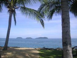 マレーシア ボルネオ島じゃらんじゃらん