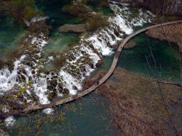 エメラルドグリーンの世界へ 世界遺産の森『プリトヴィッツェ湖群国立公園』
