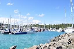 ダイバー目線のニューカレ。イルデパン、ヌーメアの海はどんな?