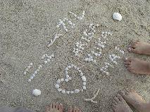 【写真中】白砂ではないですが、さらさらのビーチで貝殻を集めても楽しい☆
