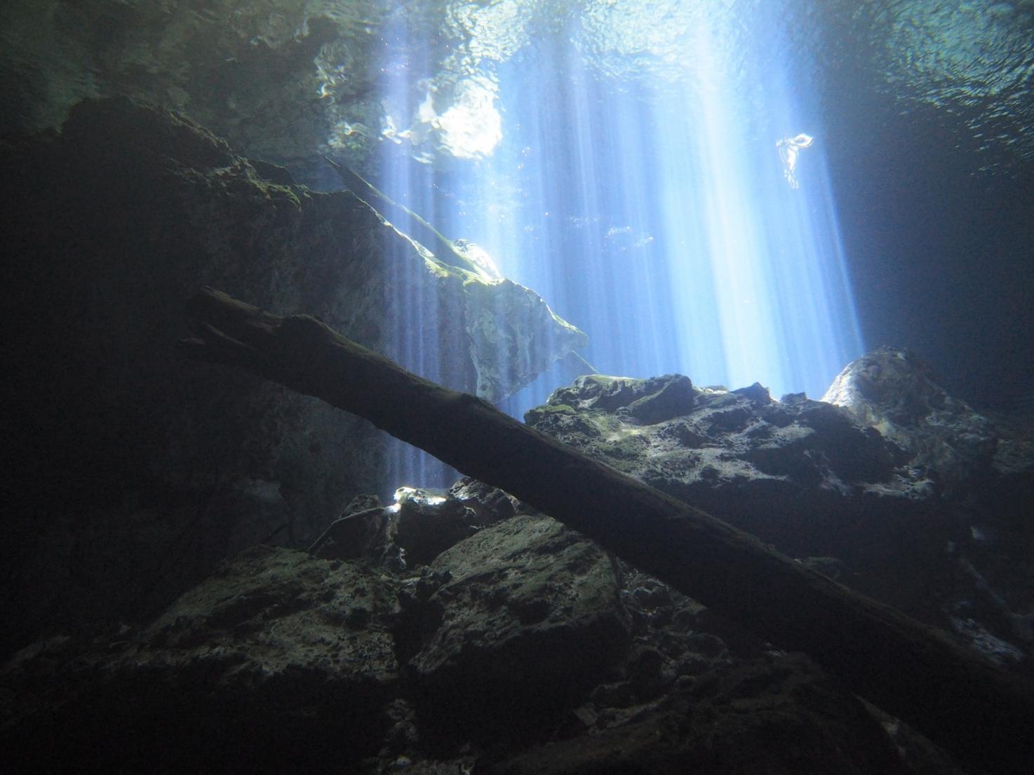 水中絶景<神秘のセノーテ>潜り倒し♪