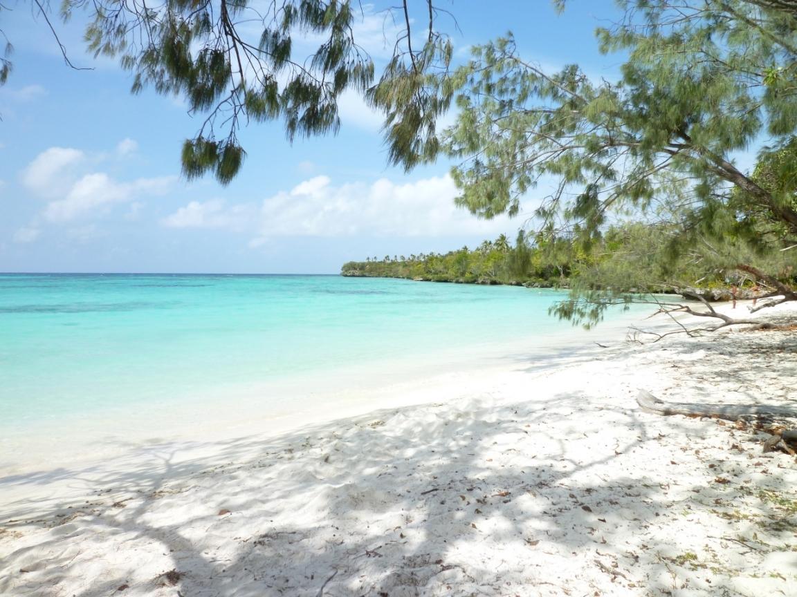 未知の島!?リフー島観光ツアー
