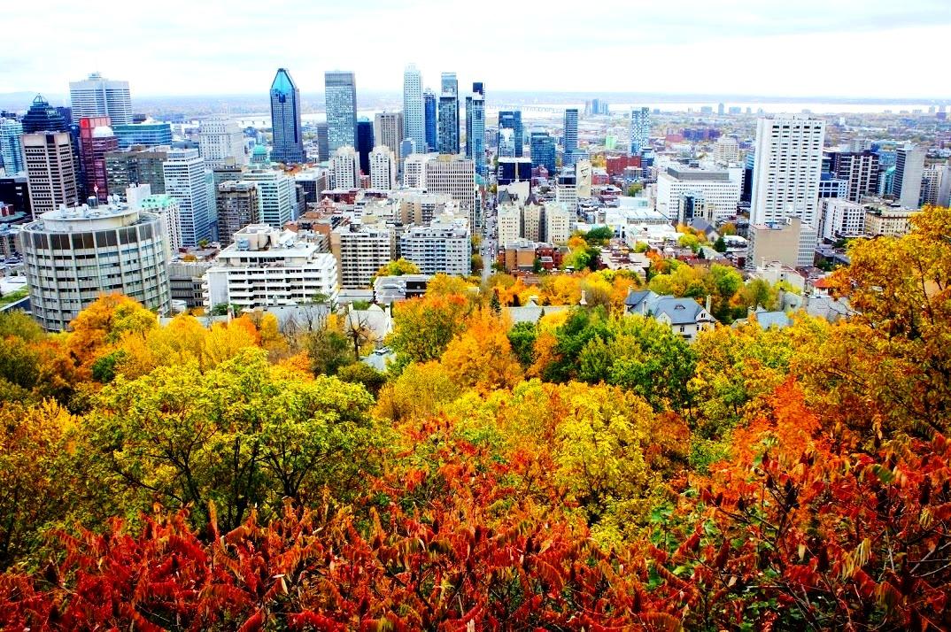 メープル街道♪秋はモントリオール&ニューヨークがお勧め!