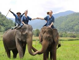 象使い体験2泊3日コース @ タイ エレファントホーム