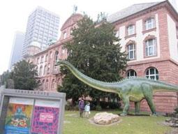 ゼンケンベルク研究所/自然博物館