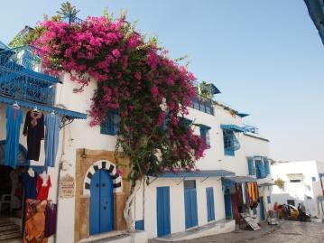 チュニジアブルーの家々