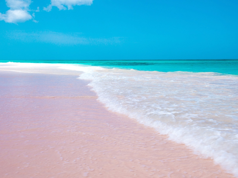 おすすめの絶景・秘境ツアー バハマ/ピンクサンドビーチ