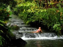 ~自然の宝庫コスタリカ~世界一美しい幻の鳥ケツァールを探しに!モンテベルデとアレナル周遊☆温泉体験 7日間