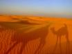チュニジア他国周遊 イメージ02