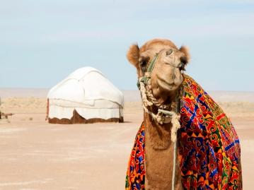 ウズベキスタン 女子旅イメージ04