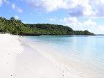 【写真上】 このホワイトサンドビーチ!さらさら!真っ白!しかも見たこともないようなきれいな貝殻が