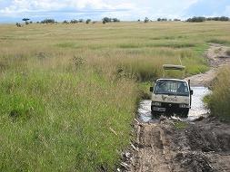 マサイマラ国立保護区①