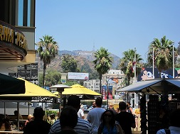 ハリウッドを満喫!ジャンクフード食べ歩き?