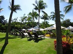 シャングリラマクタンアイランドリゾート ホテルの庭