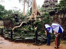 雨季でも大満喫♪カンボジアの楽しみ方
