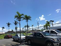 ハワイ島で何して遊ぶ? 1日目