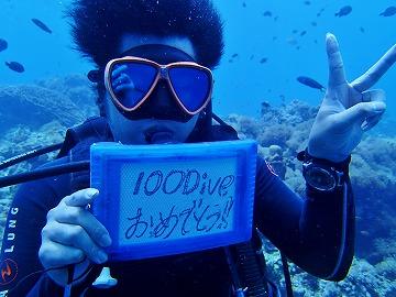 沈船からマクロから大物からワイドまで・・・フィリピン周遊...