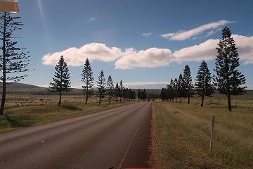ハワイの大自然を満喫!ラナイ島