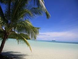 星形の島・カープ島デイトリップ イメージ