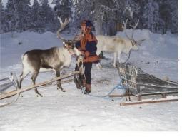 【スパとサウナで充実のホテルステイ♪】北欧雑貨の本場ヘルシンキ&ムーミンの故郷♪湖が美しい緑豊かなナーンタリ!6日間