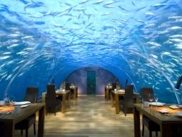 【新千歳発着】大韓航空利用 早期予約割引有り!水中レストランが魅力♪コンラッドモルディブランガリ(水上ヴィラ)朝食付 7日間