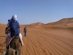 気軽にモロッコ♪鉄道×バスで巡る!タンジェ&シャウエン&フェズ&砂漠&アイトベンハッドゥ&マラケシュ10日間