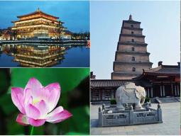 西安&上海の王道プラン イメージ1