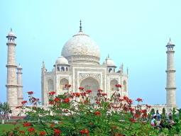 インド最速列車で行く!タージマハル日帰り観光&トリップアドバイザーで人気のブルームルームズ滞在 初めてインドの決定版 4日間!